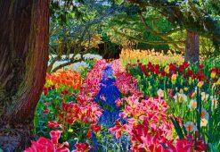 تابلو طبیعت -نمایی زیبا از باغ گلهای رنگارنگ در جنگل