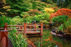 تابلو طبیعت -نمایی زیبا از جنگل پاییزی و برکه