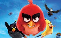 تابلو عکس پرندگان خشمگین