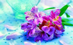 تابلو طبیعت گل زیبا