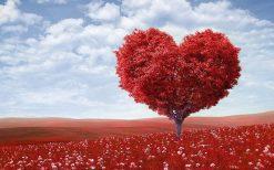 تابلو منظره درخت عشق