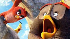تابلوی پرندگان خشمگین21