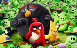 تابلو پرندگان خشمگین