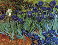 irises-1889- Still life painting