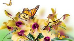 تابلوی زیبا از گل ها و پروانه ها