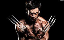 تابلو فیلم از شخصیت Wolverine #2