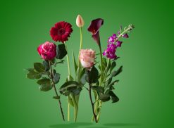 تابلو flowers_art_design